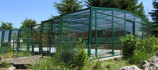The 5 Angle Olympia pool enclosure fits perfectly in any garden